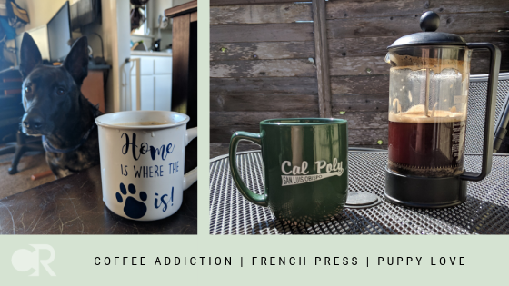 Coffee in a French Press
